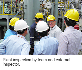 Plant inspection by team and external inspector.